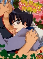 山崎との関係に嫉妬した銀さんが激カワの新八とセックスwww【BL同人誌・銀魂】