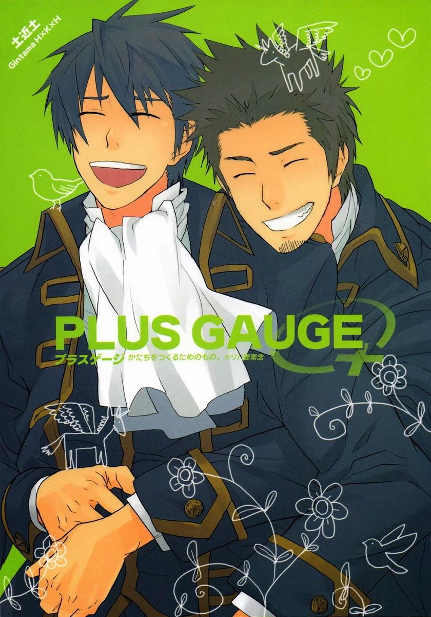 plusgauge_pg01